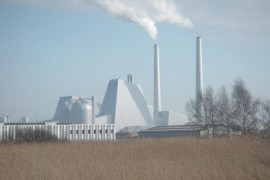 Denmark's biggest coal plant turns to biomass